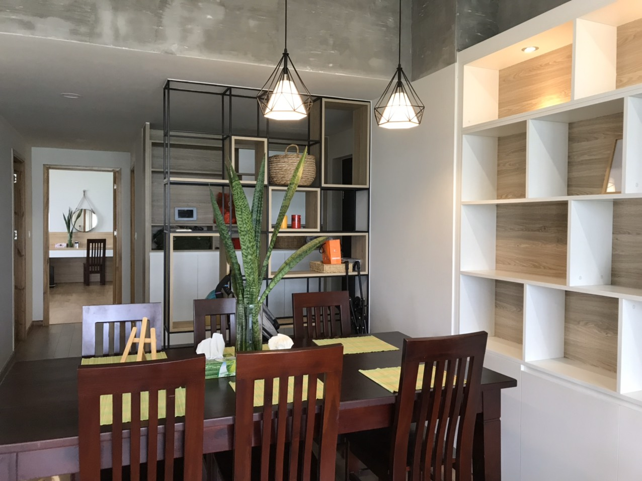 apartment for rent in green Valley district 7